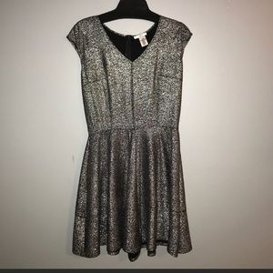 Silver Sparkly Fit n Flare Dress